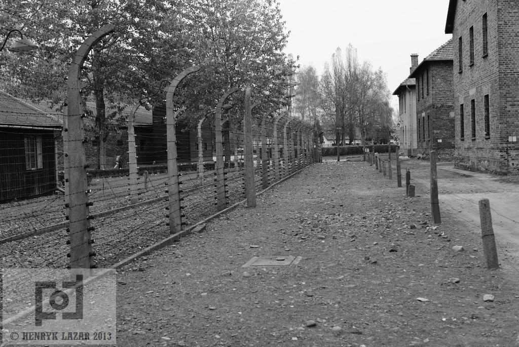 AuschwitzDSC02930