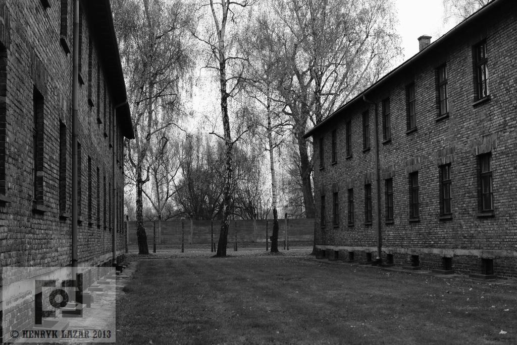 AuschwitzDSC02941
