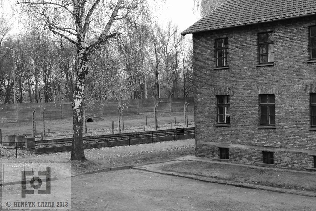 AuschwitzDSC02943