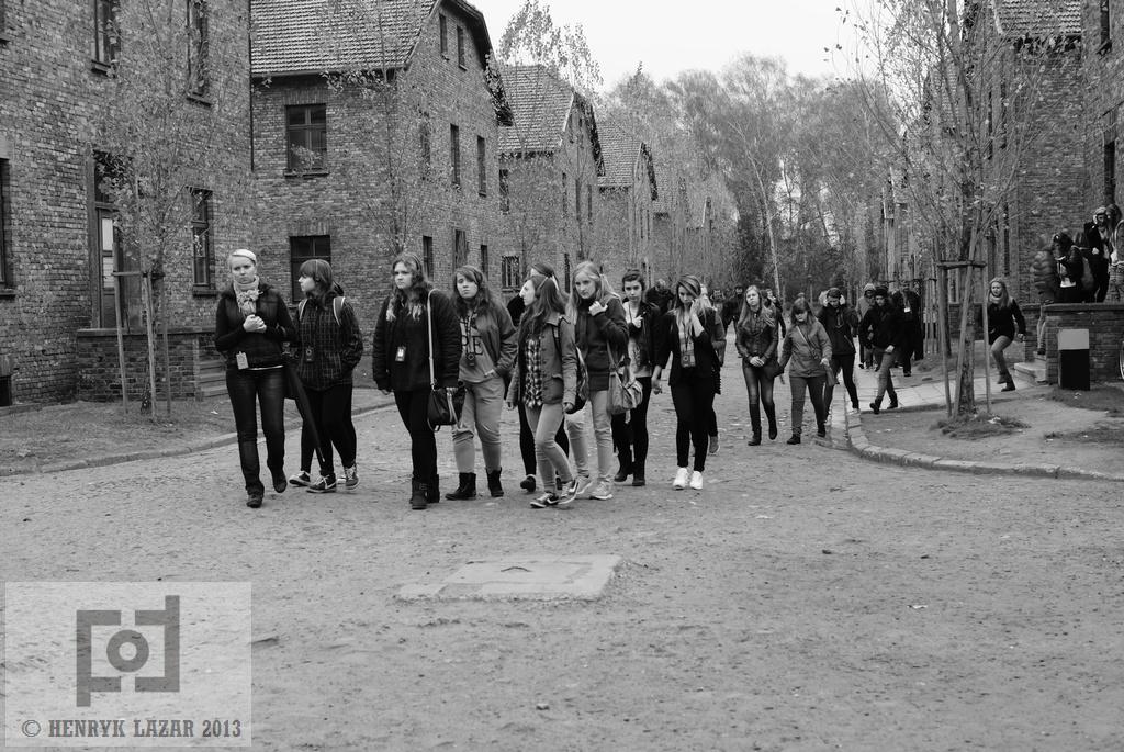 AuschwitzDSC02944
