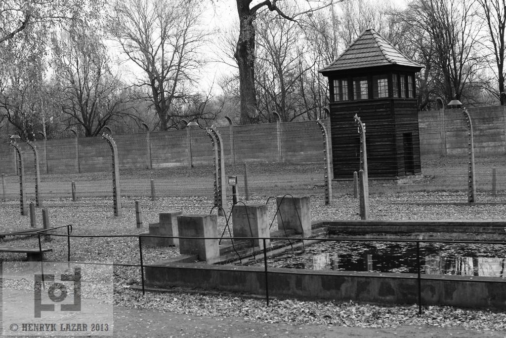AuschwitzDSC02946