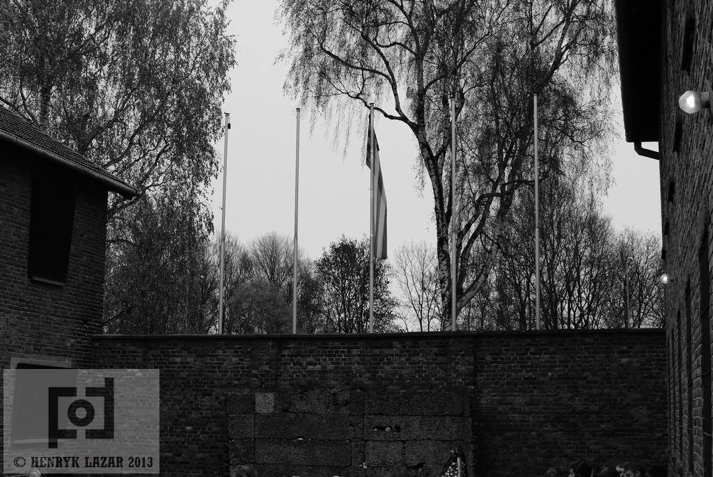 AuschwitzDSC02953