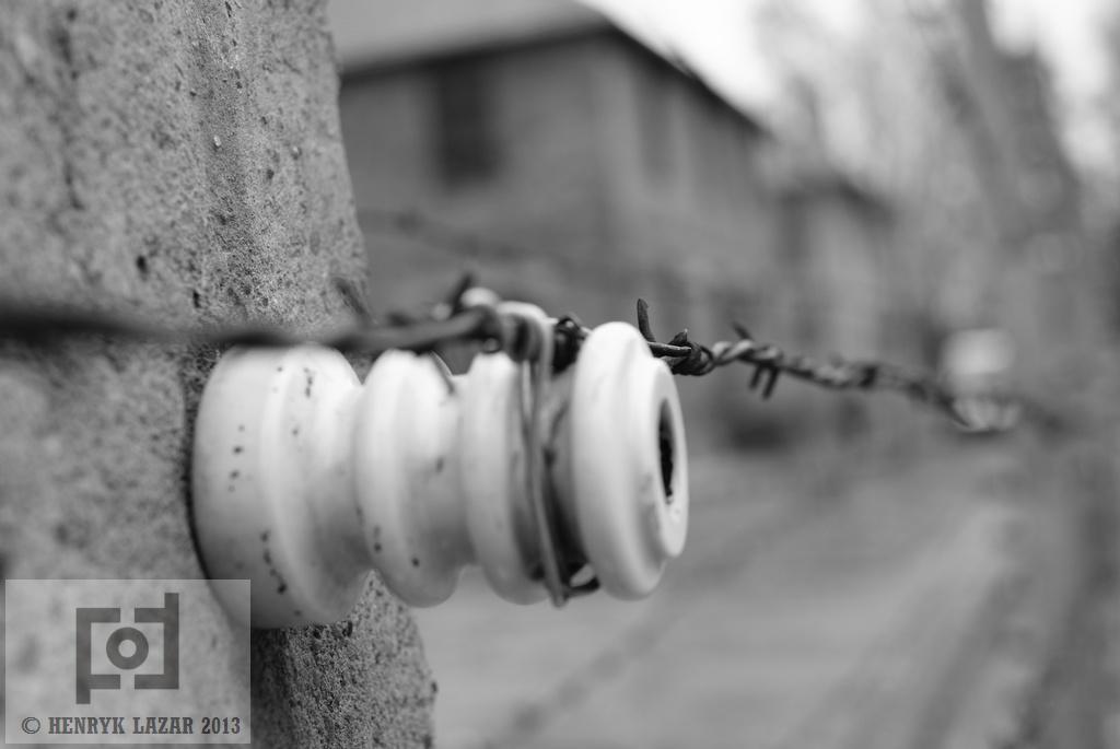 AuschwitzDSC02957