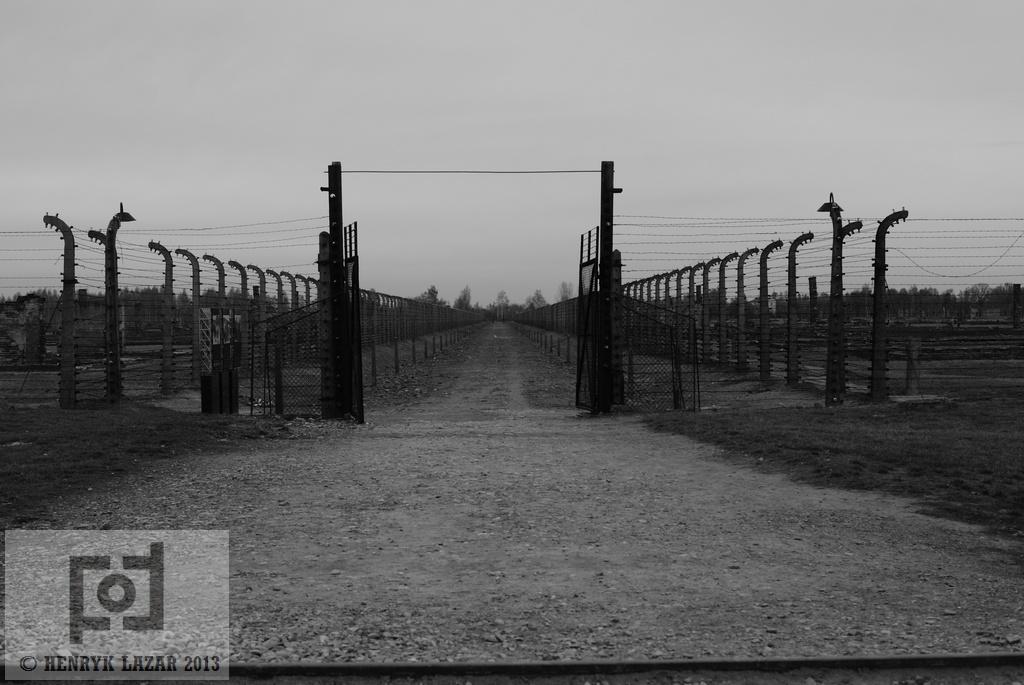 AuschwitzDSC02970